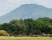Lower Zambezi National Park, Chiawa Camp, Zambia