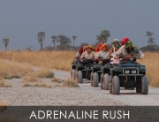 Adrenaline Rush - a Real African Safari Adventure