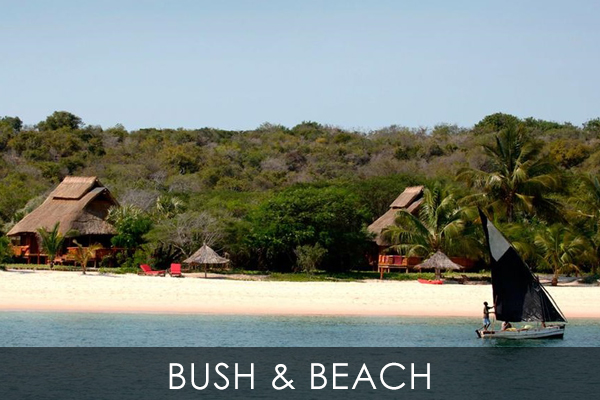 Bush & Beach Safari offers authentic bush safari & romantic beaches