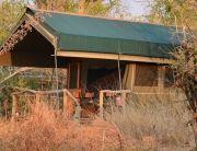 Sango Safari Camp, Okavango Delta, Botswana
