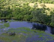 Linyanti, Savuti & Selinda Reserve Botswana