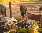 Kanga Camp - Dining with elephants. © African Bush Camps