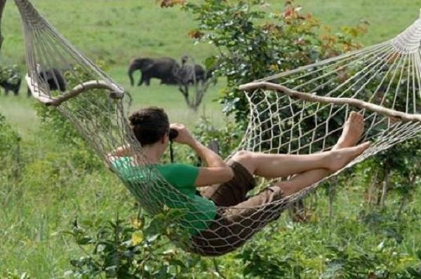 Relaxing at Sable Sands Lodge, Hwange National Park, Zimbabwe