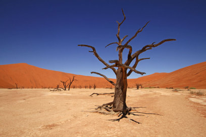 Steinhügel, Dead Vlei in Namibia, Dead Tree, Red Dunes and Blue Sky, Eric Paul, Travelbook
