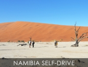 Namibia Self-Drive Safari Package, Self-Drive stunning Namibia from Windhoek, Sossusvlei and Twyfelfontein to Etosha National Park