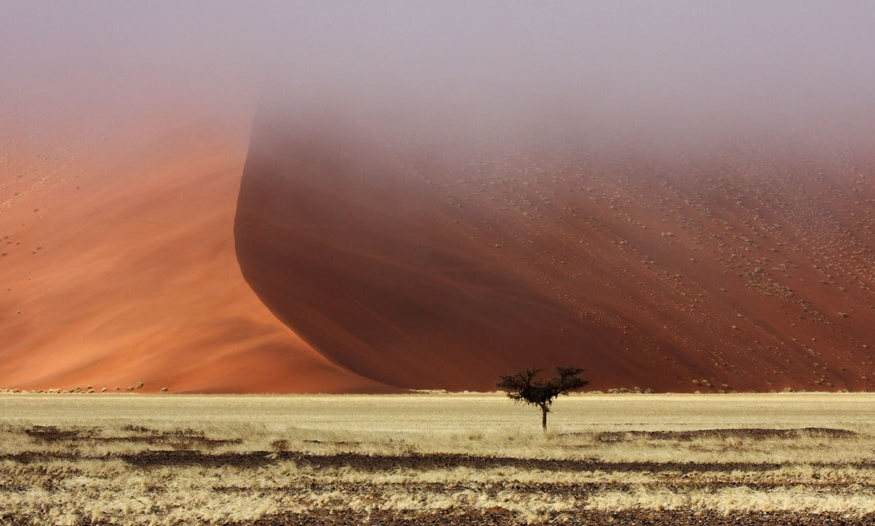 Sossusvlei Wüste, Namibia, amazing Red Sand Dunes, Travelbook.de