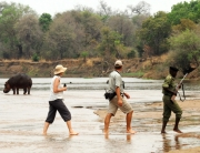 Walking Safari Special in Zambia, Stay at Chikoko Trails & Flatdogs Camp in Southern Luangwa, enjoy a great Special Offer.
