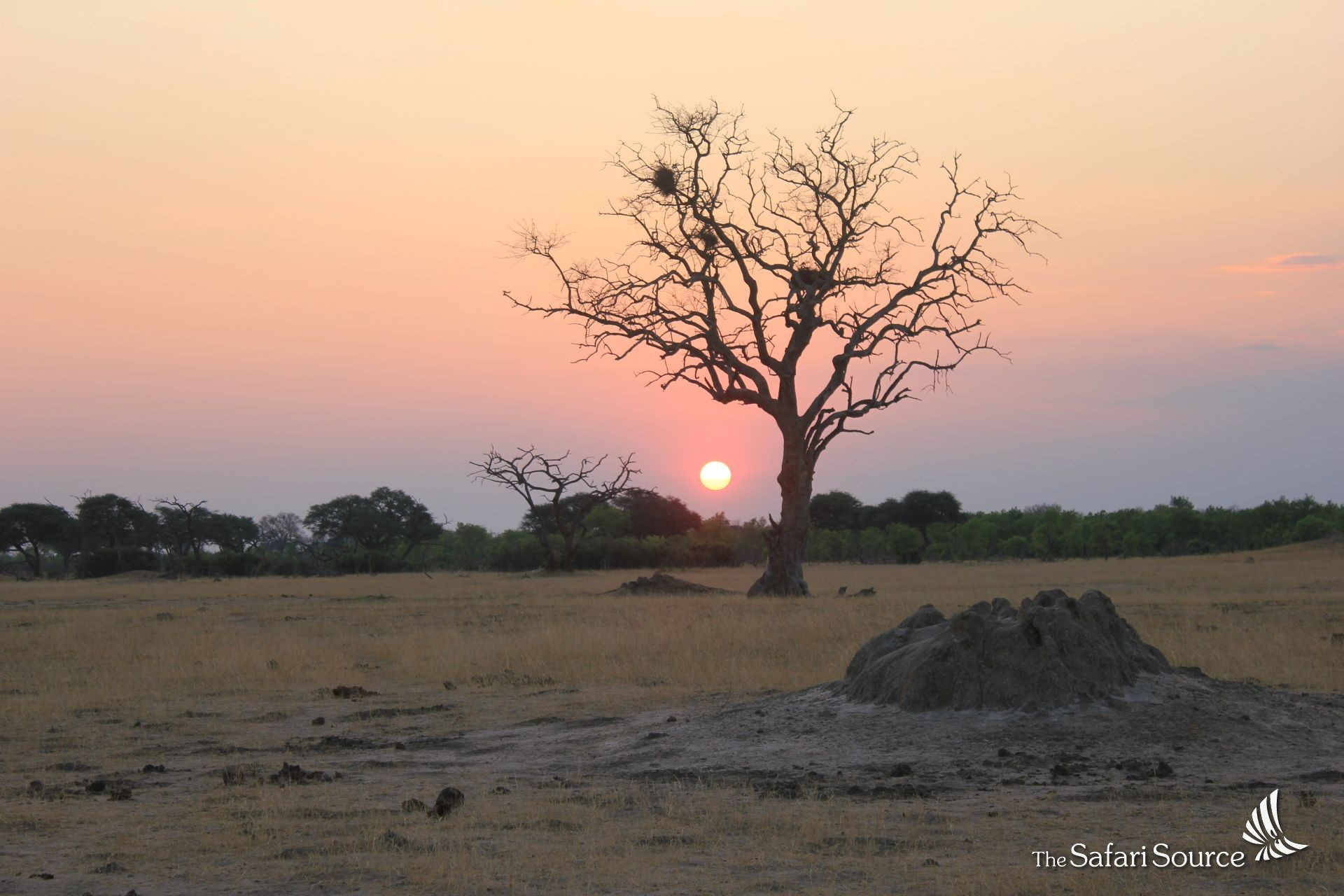 African sunsets are some of the most stunning sunsets. Why does it look so red?