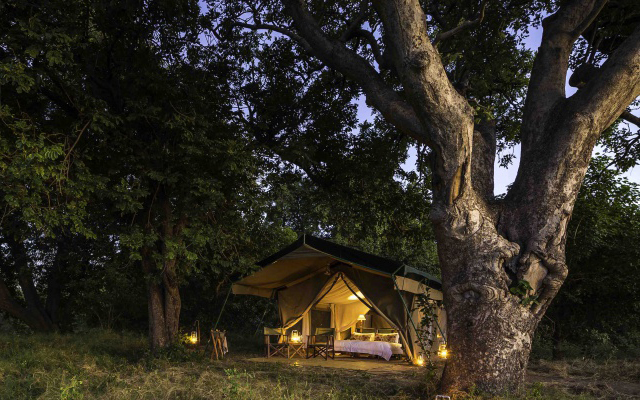 Tent at John's Camp, Mana Pools, Zimbabwe.