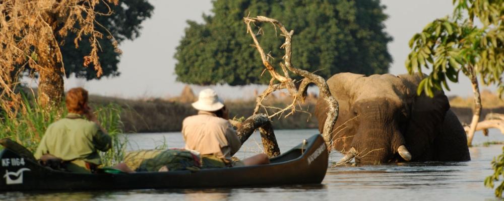 Natureways canoeing safaris